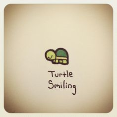 Turtle Smiling