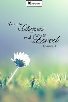 Bible Verses to Live By:you are chosen and loved Ephesians 1:4