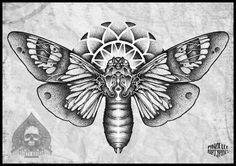 moth-butterfly dot by pande-lee.deviantart.com on @deviantART