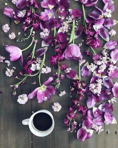 Spring Aesthetic, Purple Aesthetic, Coffee Pictures, T Art, Coffee Is Life, World Of Color, Coffee Cafe, Shades Of Purple, Pretty Flowers