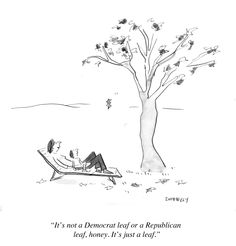 http://www.forbes.com/sites/lizadonnelly/2012/09/24/three-must-dos-to-get-you-through-this-political-season/
