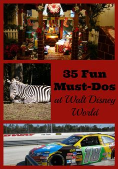 35 Off-the-Radar Things to Do at Walt Disney World