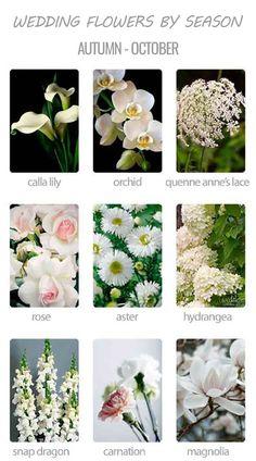 Choosing Wedding Flowers By Season