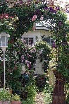 """小さな庭が色鮮やかになってきました~(*^^*)   枕木に誘引しているミニバラ""""夢乙女""""がご覧のとおり続々開花してきました♪ トゲが細かいため、剪定&誘引が大変だったようですが、苦労が報われましたね(*^^*)   今年は剪定を強めにした四季咲き性の""""バレリーナ""""ちゃんですが、..."""
