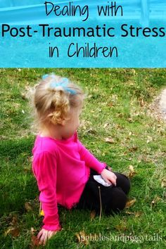My Experience Dealing with a Child with Post-Traumatic Stress.  Some helps on what to do and how you can help them find peace again.