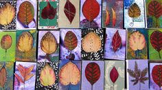 Matchboxes with Leaves by bangli1