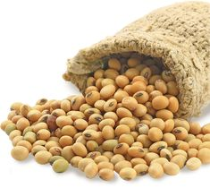 Refined Soybean Oil contains Vitamin E for no heart disease. Buy the Best Soybean Oil Online to prevent damages caused by free radicals. Get offer on Soybean Oil Online