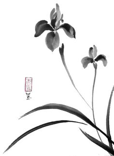Original Japanese art Serene irises sumi-e drawing por ZenPresent