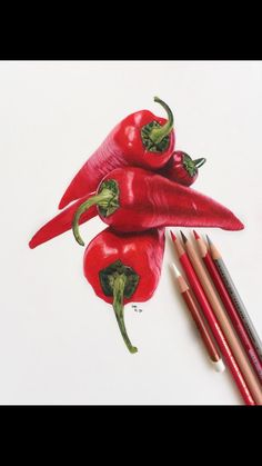 Draw Realistic, Realistic Flower Drawing, Pencil Drawing Tutorials, Pencil Art Drawings, Colored Pencil Artwork, Drawings With Colored Pencils, Color Pencil Sketch, Colour Drawing, Colored Pencil Techniques