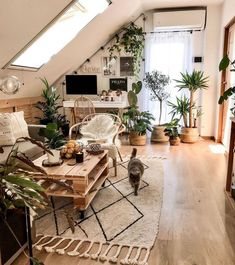 EasyLeaf on Sunday Funday! Any plans for your day! Its cozy hammock Sunday so stay tuned to our story! us ez_leaf Home Decor Inspiration, Decor, House Interior, Apartment Decor, Aesthetic Room Decor, Stylish Home Decor, Room Ideas Bedroom, Interior, Boho Living Room