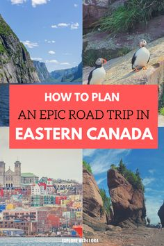Planning an East Coast Canada road trip? Read this first! This guide will help you plan the perfect road trip through the Martimes and Newfoundland. East Coast Canada, Canada National Parks, East Coast Road Trip, Perfect Road Trip, Visit Canada, Canada Travel, Road Trip Canada, Prince Edward Island, Places To Go