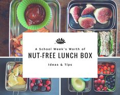 5 Nut-Free Lunch Box Ideas