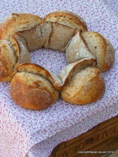 grain de sel - salzkorn: Brot und Brötchen