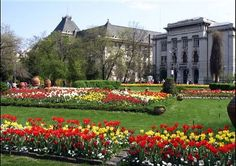 The Most Beautiful Parks in Bucharest - Cismigiu Park Beautiful Park, Beautiful Gardens, Most Beautiful, Capital Of Romania, Gardens Of The World, Royal Garden, Historical Monuments, Public Garden, Bucharest