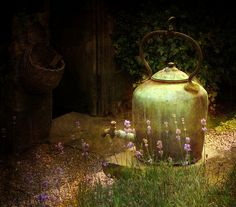 Old Kettle (by Vesna Armstrong)
