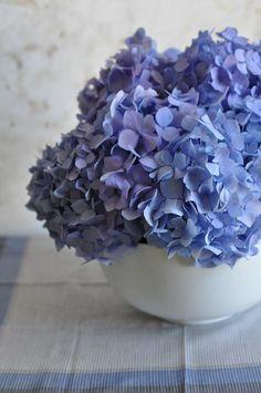.~Blue~.