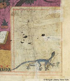 Bestiary, MS M.500 fol. 78r - Images from Medieval and Renaissance Manuscripts - The Morgan Library & Museum