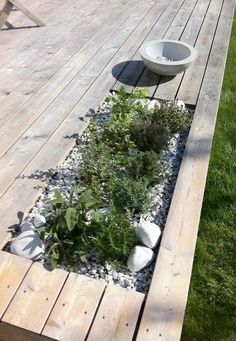 Terrific idea to brink plants right into your deck. This is the perfect place to have plants that can repel mosquitoes like lemongrass and citronella geraniums! Back Gardens, Small Gardens, Outdoor Gardens, Scandinavian Garden, Wooden Decks, Wooden House, Exterior, Terrace Garden, Garden Bed