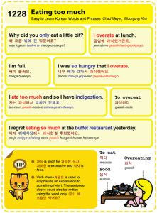Easy to Learn Korean 1228 - Eating too much.