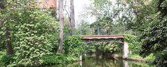 Colinas, parques y jardines urbanos conforman un auténtico pulmón verde en el… Arch, Outdoor Structures, Live, Urban, Green, Longbow, Wedding Arches, Bow, Arches
