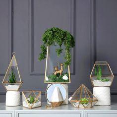 Triangle Pyramid Geometric Glass Terrarium Box Succulent Fern Moss Planter Hanging Plant Pots Bonsai Pots Flower Pots For Garden