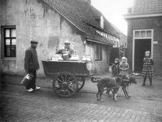 Melkvervoer in Nederland. Melkboer met hondenkar in het dorp 's-Gravenzande. Jaa…