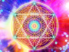 フラワー・オブ・ライフは天地を合わせたすべての生命や存在、事象、輪廻転生を表す神聖幾何学模様のひとつです。肉体と精神体の、統合と活性化を促します。このカードは特に高次意識と深い関係のあるチャクラ、エネルギーを刺激します。部屋に張ったり、祭壇に置いたり、瞑想などのワークを共にすることで、あなたは意識と肉体の目覚めを感じるでしょう。