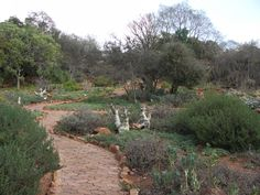 Pretoria, South Africa   This is a picture of their National Botanical Gardens