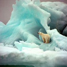 www.delunademiel.es Muy muy al norte....Polo Norte