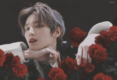 who's more beautiful taeyong or roses you know the answer Nct Taeyong, Winwin, Jaehyun, Nct 127, Rapper, Entertainment, Wattpad, Porno, Fandoms