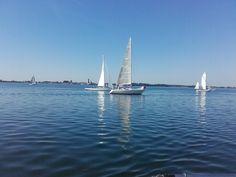 KAREN deltager i onsdagskapsejladserne med Bogø og Stubbekøbing sejlklub - her juni 2016