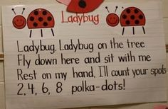 makes me think of my Kylie everytime i see a ladybug makes me think that she is watching over us and there for us to remember her Kindergarten Poems, Preschool Songs, Kids Songs, Kindergarten Classroom, Bug Songs, Math Poems, Classroom Decor, Infant Classroom, Silly Songs