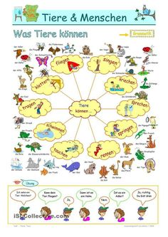 Modal verb can _ what animals & humans can Modal Verb Can, Modal Can, German Grammar, German Words, Learn German, Learn English, Learning Activities, Kids Learning, German Resources