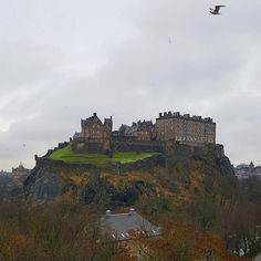 Soaring with the gulls. Glorious  Edinburgh. View from my room at the Waldorf Astoria