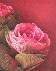 Ornamental Kale Canvas Print / Canvas Art by Jan Lawnikanis Ornamental Kale, Canvas Art, Canvas Prints, Pastel Paper, Coloured Pencils, Buy Art Online, Paintings For Sale, Cool Artwork, Online Art Gallery