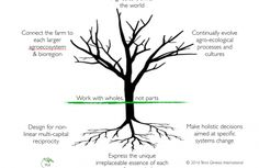 4 Levels of Regenerative Agriculture - free report | Permaculture magazine