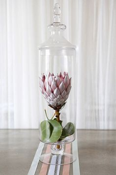 Protea in apothecary jar! arrangement by Lotus Flowers