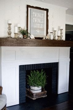 Houseplant in unused fireplace
