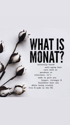 What is monat? - - What is monat? Hair Products Monat is a naturally based anti-aging hair care with no parabens or silicones. it's made to give you longer, stronger and healthier hair all while being cruelty free and made in the US. My Monat, Monat Hair, Hair Care Oil, Diy Hair Care, Anti Aging, Hair Quiz, Natural Hair Conditioner, Oil For Hair Loss, Hair Loss Treatment
