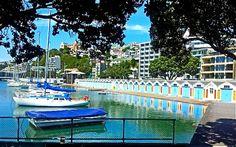 Beautiful Wellington NZ waterfront.