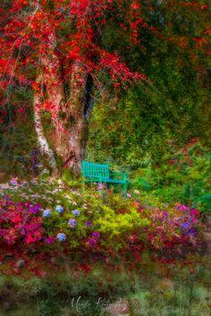 Autumn Rest... by Martin Kavanagh on 500px