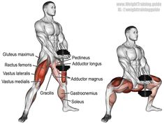 The dumbbell sumo squat (aka dumbbell plie squat) is great for learning squat fo. The dumbbell sumo squat (aka dumbbell plie squat) is great for learning squat form, especially how to keep your knees out and torso upright as you squat. Gym Workout Tips, Dumbbell Workout, Fitness Workouts, At Home Workouts, Fitness Tips, Fitness Motivation, Squat Exercise, Dumbbell Squat, Fitness Memes