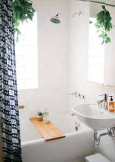 "Slide 8 of 20: <a href=""http://www.designsponge.com/2013/10/north-of-south-and-east-of-west-an-oasis-of-warmth-and-style-in-minneapolis.html"">Plants in the shower</a> help purify the air and neutralize odors and bacteria."
