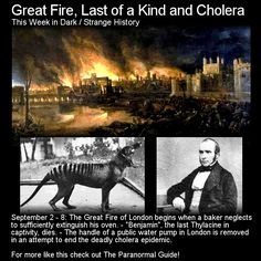 Great Fire, Last of a Kind and Cholera. Here are three more pieces of strange, dark or weird history that took place this week in the past. http://www.theparanormalguide.com/blog/great-fire-last-of-a-kind-and-cholera
