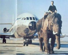 Thai Airlines Caravelle towed by an Elephant, thanks to SAS... but not for the elephant!