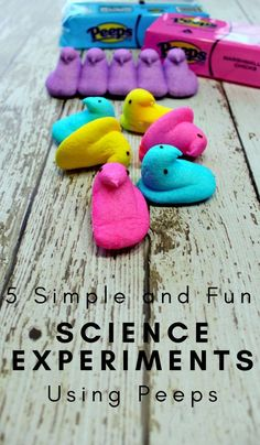 Science Experiments For Kids Using Peeps The Frugal Navy Wife Science Experiments For Kids Using Peeps The Frugal Navy Wife Araceli Barajas Science-children Peeps Either you love them nbsp hellip Peeps Science Experiment, Elementary Science Experiments, Science Activities For Kids, Science Fair Projects, Preschool Science, Science Lessons, Chemistry Experiments, Science Chemistry, Math Projects