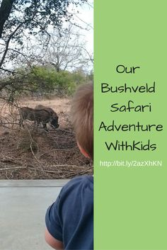 Our bushveld safari adventure WithKids. Accommodation and car tips for a family holiday, excursion or getaway in or near the Kruger National Park. Family Friendly Holidays, Family Holiday, Travel With Kids, Family Travel, Kids Party Venues, Safari Adventure, Summer Vacations, Kruger National Park, Holiday Accommodation