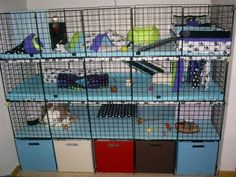 Awesome idea for combining storage of pet supplies with a bunny condo. NIC Cubes makes it easy to alter so that the storage can also be on top or along the side.