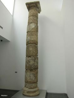 Columna restaurada. Calcarenita fosilífera. Siglo I dc. (Zona Basílica). Museo del Conjunto Arqueológico de Baelo Claudia.