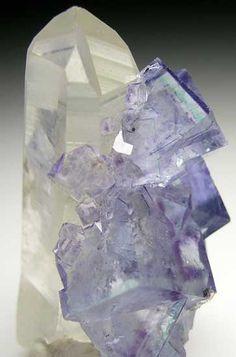 Fluorite on Quartz from Yaogangxian Mine, Hunan, China [db_pics/pics/a505a.jpg]